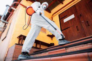 Combatir plagas en Sevilla en tiempos de coronavirus